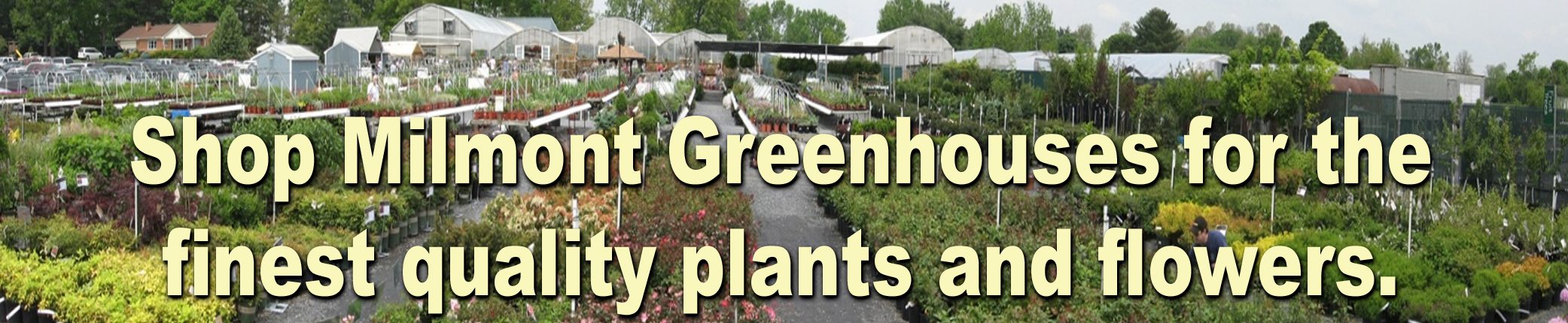 Unsurpassed Quality Plants and Flowers