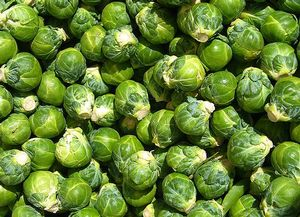 Brussel sprouts have leafy green buds which resemble miniature cabbages. Care should be taken not to overcook the sprouts, which can give them a bitter taste.