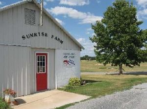 SUNRISE FARMS, INC.