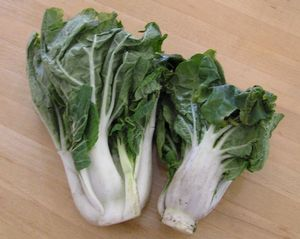 Chinese Cabbage, also known as Bok Choy, is a Chinese leaf vegetable often used in Chinese cooking. It is related to the western cabbage and is of the same species as the turnip.