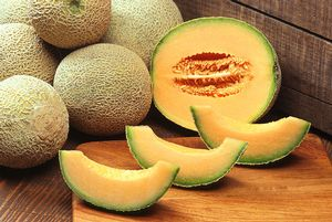 Cantaloupe is part of the